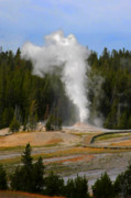 Montana Landscape Art Posters - Yellowstone Park WY - Geyser letting off steam Poster by Christine Till