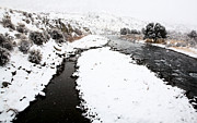 Yellowstone Park Wyoming Winter Snow Soda Butte Creek Print by Mark Duffy