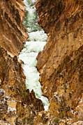Adam Pender - Yellowstone River