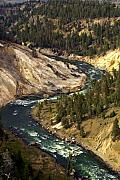 Yellowstone River Canyon Print by Marty Koch