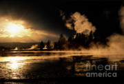 West Yellowstone Posters - Yellowstone River Sunrise Poster by Sandra Bronstein