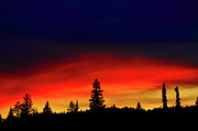Park Scene Photos - Yellowstone Sunset by Bill Gracey