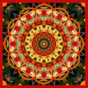 Sacred Geometry Photo Posters - Yes Poster by Bell And Todd
