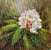 White Flowering Bush Paintings - Yesterdays Rhodie by Katherine Tucker