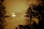 Shadows Photos - Yesteryears Moon by DigiArt Diaries by Vicky Browning