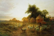 Farm Fields Painting Framed Prints - Yon Yellow Sunset Dying in the West Framed Print by Joseph Farquharson