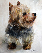 Yorkshire Terrier Art Framed Prints - Yorkie Framed Print by Mary Sparrow Smith