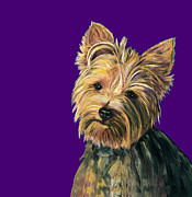 Yorkie Prints - Yorkie On Purple Print by Dale Moses