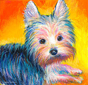 Puppy Print Framed Prints - Yorkie puppy painting print Framed Print by Svetlana Novikova