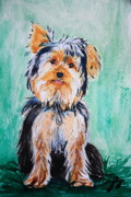 Playing Painting Originals - Yorkie by Tonya Self