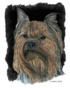 Akc Digital Art - Yorkshire Terrier by Larry Linton