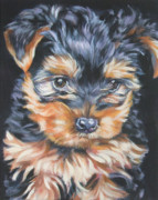 Yorkshire Terrier Metal Prints - Yorkshire Terrier pup Metal Print by Lee Ann Shepard
