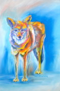 Animal Portraits Pastels - Yosemite Coyote by Pat Crowther