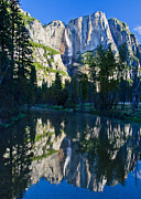 Yosemite Falls Metal Prints - Yosemite Falls Reflection Metal Print by About Light  Images