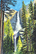 Falls Drawings - Yosemite Falls Watercolor Painting by Carol Wisniewski