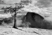 Half Dome Posters - Yosemite Landscape Poster by Chris Brewington