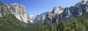 Margie Wildblood - Yosemite Panorama