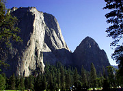 Forest Prints - Yosemite Park El Capitan  Print by The Kepharts 