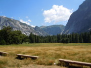Benches Photo Originals - Yosemite by Patti Jacobsen