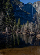 Yosemite River View Print by Rick Mutaw