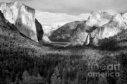 Monolith Posters - Yosemite Valley Poster by Sandra Bronstein