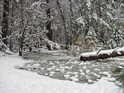 Beautiful Creek Prints - Yosemite Winter Print by Heidi Smith