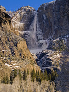 Yosemite Falls Metal Prints - Yosemites Splendor Metal Print by Bill Gallagher