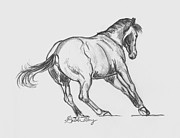 Dressage Drawings - You cant catch me... by Gretchen Almy