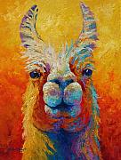 Llamas Prints - You Lookin At Me Print by Marion Rose