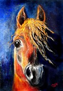 Horse Drawing Mixed Media Prints - Young Arabia Print by Tarja Stegars