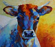 Heifers Posters - Young Blood - Longhorn Poster by Marion Rose