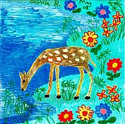 Sue Burgess Prints - Young deer drinking Print by Sushila Burgess