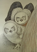 Owls Mixed Media - Young Great Horned Owls by Alan Suliber