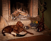 Irish Setter Framed Prints - Young Irish Setter Framed Print by Tanya Kozlovsky