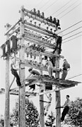 Telephone Lines Framed Prints - Young Men Working On Telephone Poles Framed Print by Everett