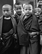 Buddhism Art - Young Monks II bw by Steve Harrington