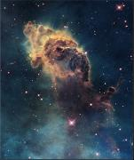 Stars Photo Posters - Young Stars Flare In The Carina Nebula Poster by Nasa/Esa