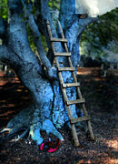Hiding Photos - Young Woman Climbing a Tree by Jill Battaglia