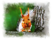 Squirrel Painting Prints - Yum Yum Print by Michael Greenaway