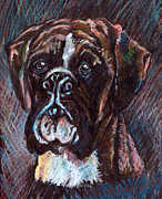 Boxer Pastels Framed Prints - Zac Champion Boxer  Framed Print by James Richardson