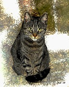 Felines Dale Ford Prints - Zachary Print by Dale   Ford