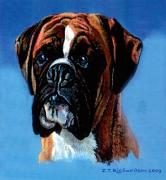 Boxer Paintings - Zak by James Richardson