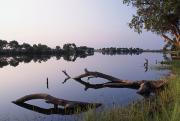 Zambesi River Print by Axiom Photographic