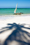 Sailboat Ocean Framed Prints - Zanzibar Beach Framed Print by Adam Romanowicz