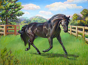 Friesian  Horse Prints - Zanzibar Print by Nancy Tilles