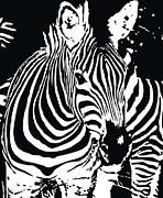 zebra-01D Print by Eakaluk Pataratrivijit