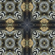 Magissimo Prints - Zebra Cross II Print by Maria Watt