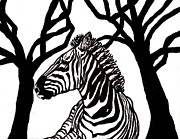 Zebra Paintings - Zebra in Black and White by Connie Valasco