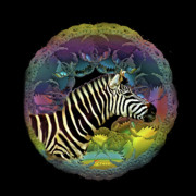 Zebra Digital Art - Zebra by Julie  Grace