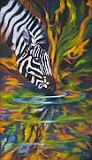 Contemporary Artist Framed Prints - Zebra Framed Print by Kd Neeley